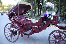 MAROON  CARRIAGE
